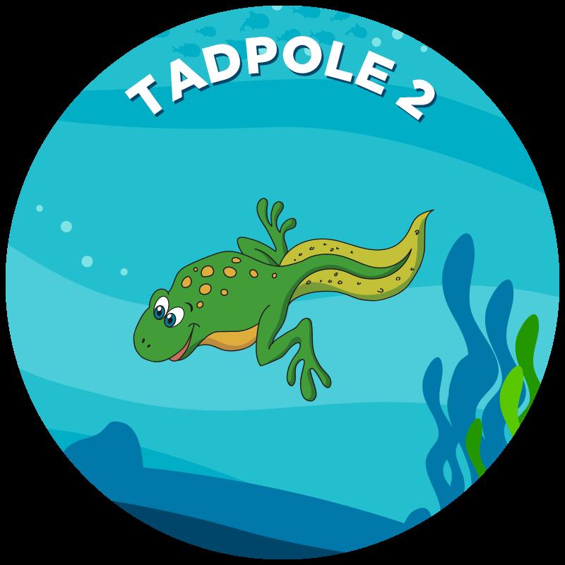 Tadpole 2