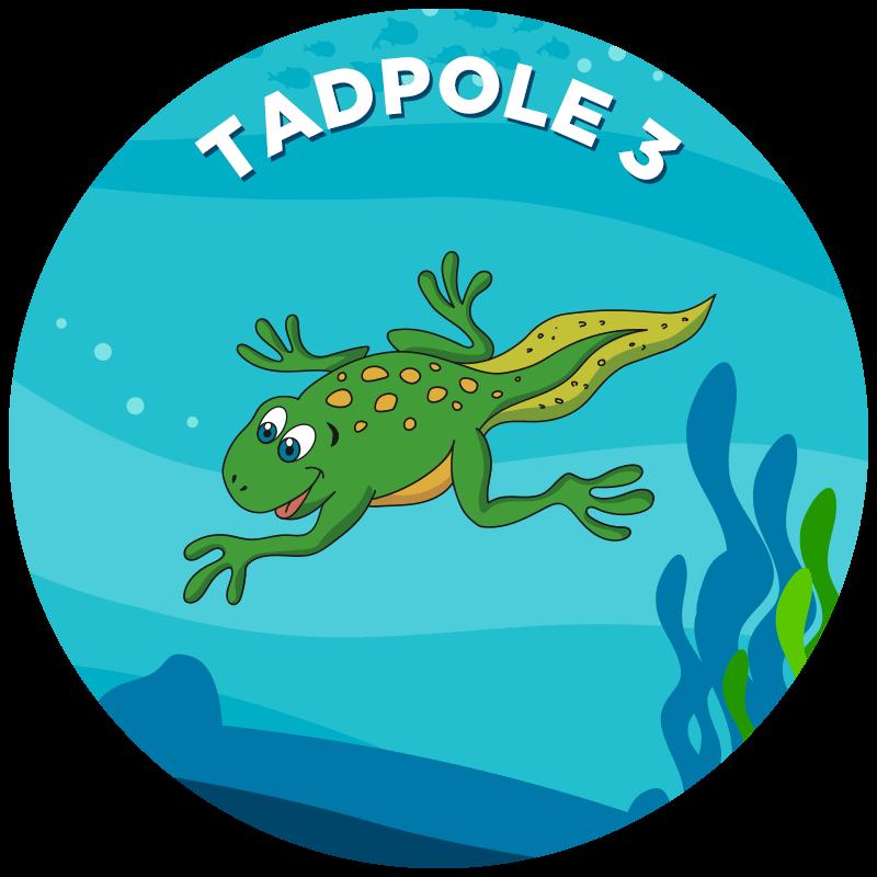 Tadpole 3