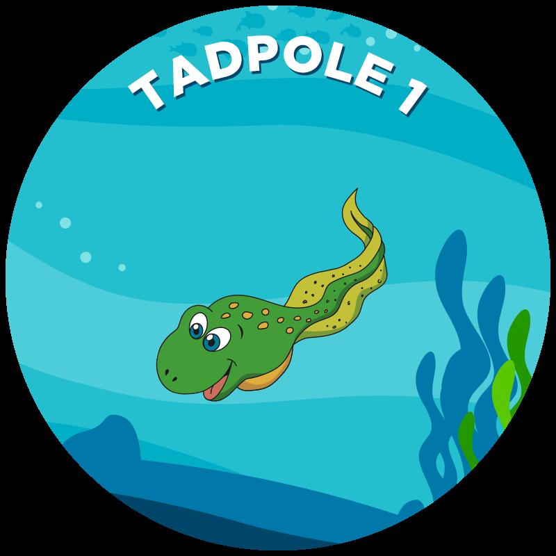 Tadpole 1